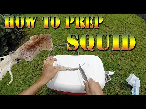 How to Prepare and Clean Your Squid For Fishing - Fishing Bait Tutorial / Hawaii Fishing Tutorial