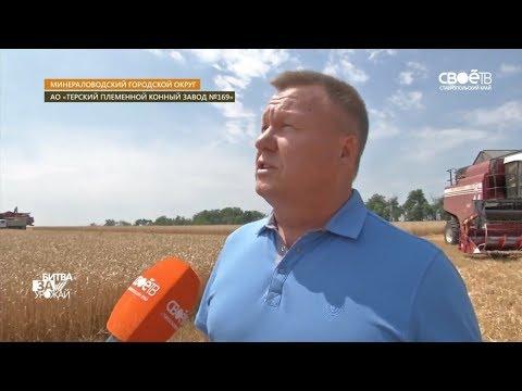 Битва за урожай в Ставропольском крае