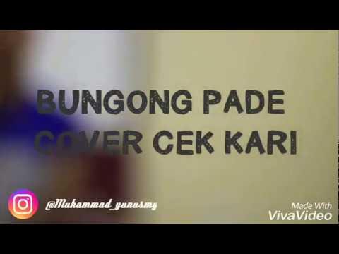 Lagu aceh _bungong pade @marwan