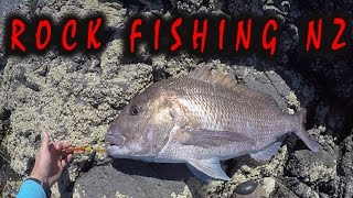 ROCK FISHING FOR SNAPPER AND KINGFISH  FAR NORTH NZ