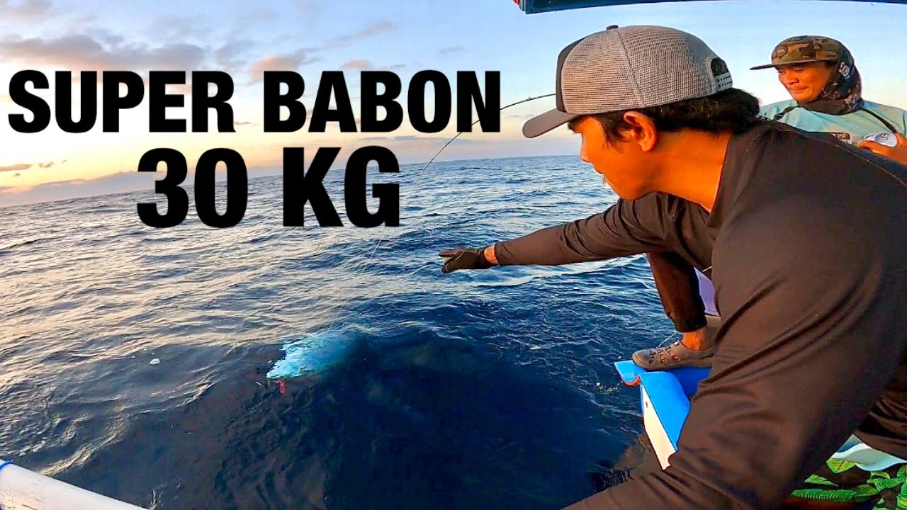 PAGI-PAGI LANGSUNG DIHAJAR SAMA SUPER BABON 30 kg ❗️