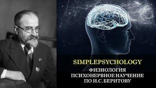 Физиология. Психонервное научение по И.С. Беритову.
