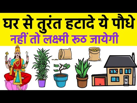 घर के सामने भूलसे भी ना लगाए ये पौधे दरिद्रता लाते है ऐसे घर में लक्ष्मी माँ वास नही करती Vastu Tips
