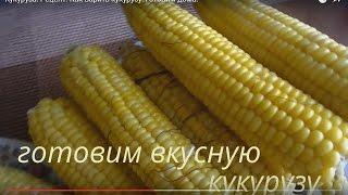 Кукуруза. Рецепт.Сладкая кукуруза.  Как варить кукурузу. Готовим дома.