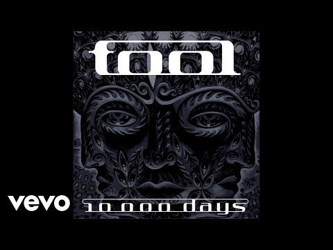 TOOL - Vicarious (Audio)