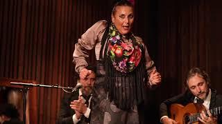 Barbalé flamenco live - Cia. La Lupi