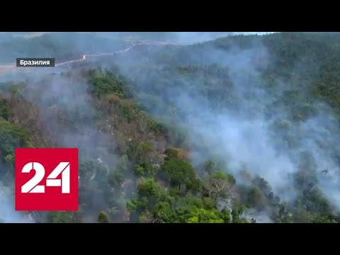 Из-за пожаров в Амазонии президенты перешли на оскорбления - Россия 24