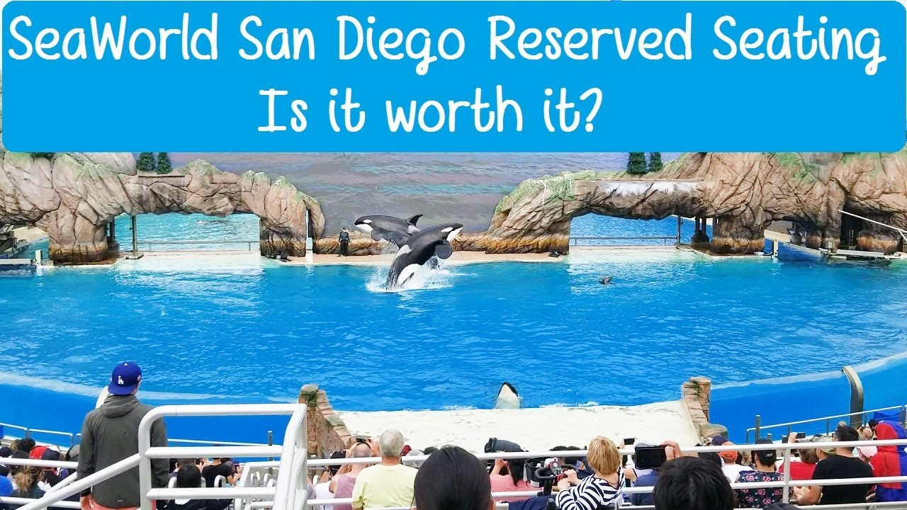 SeaWorld San go Reserved Seating - Is It Worth It? on universal map, disney's animal kingdom map, disneyland map, cedar point map, discovery cove map, michigan adventure map, zoo map, busch gardens map, disney blizzard beach map, san antonio riverwalk map, san diego map, islands of adventure map, knotts berry farm map, aquatica map,