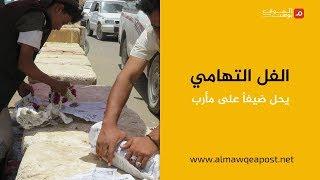 شاهد.. الفل التهامي في مارب لأول مرة .. للحرب وجوه أخرى في اليمن