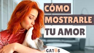 Cómo DECIRLE a tu gato que LE AMAS ❤ [5 formas diferentes]