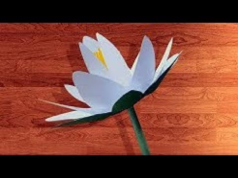 DIY paper Water Lily- How to make Water Lily With Paper