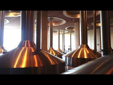 AB InBev Brewery Tour | Leuven Belgium