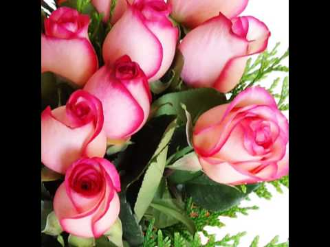 flores y rosas hermosas youtube
