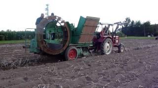 Kartoffelernte 2011