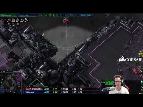 Asking the Right Questions + Defending Ling rushes TvZ - Newbie Stream