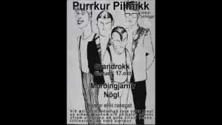 PP (Purrkur Pillnikk heiðursband) - Gluggagægir_Flughoppið