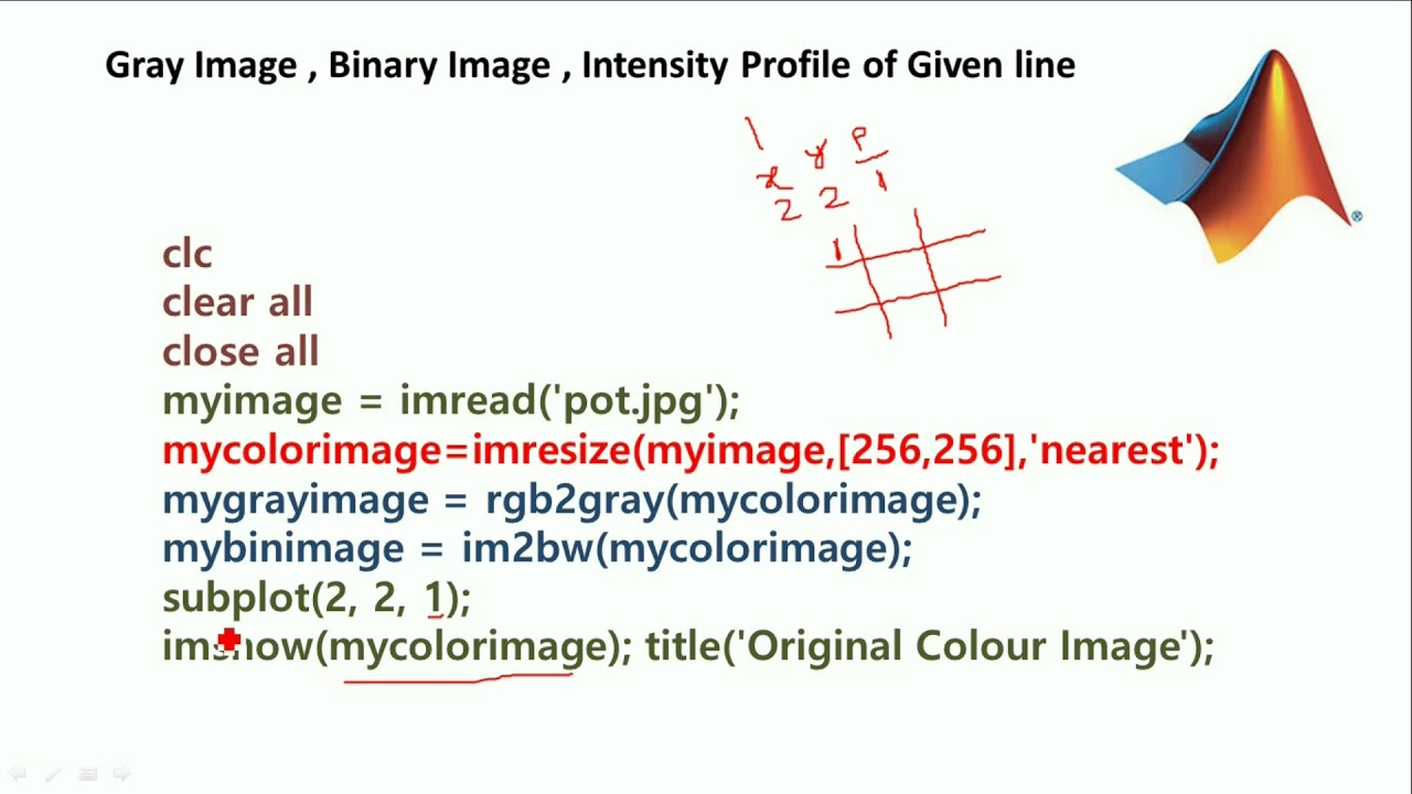 MATLAB CODES - Color image to Gray image, Binary image, intensity Profile