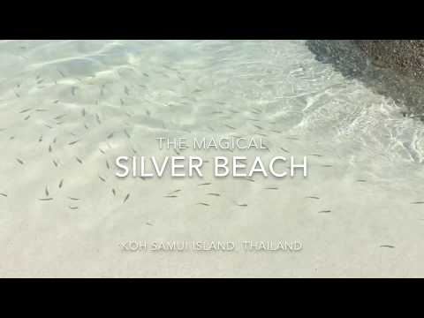 Things to do in Koh Samui – The Silver Beach