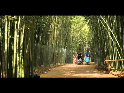 Hooper Zoo Commercial