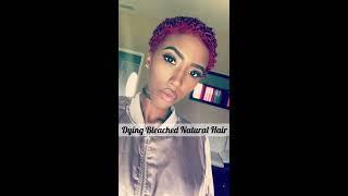 How To: Dye Bleached Natural Hair | 4C TWA
