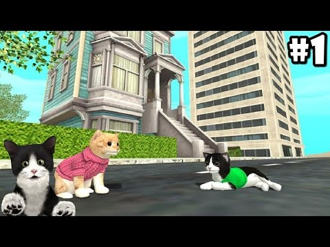 Cat Sim Online: Play with Cats By Turbo Rocket Games - Android / iOS - Gameplay Episode 1