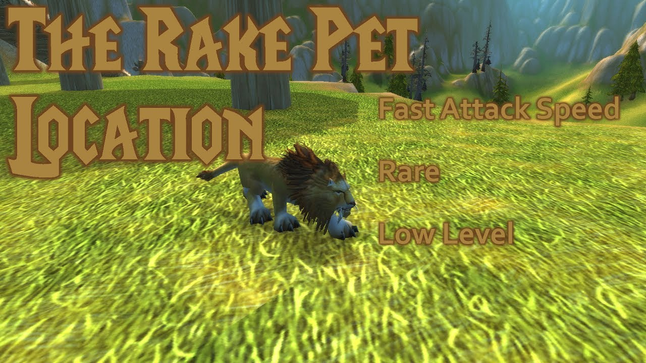 Wow Classic Pet Location The Rake 1 20 Attack Speed Youtube