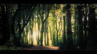 Alopex - The Forest of Gliese