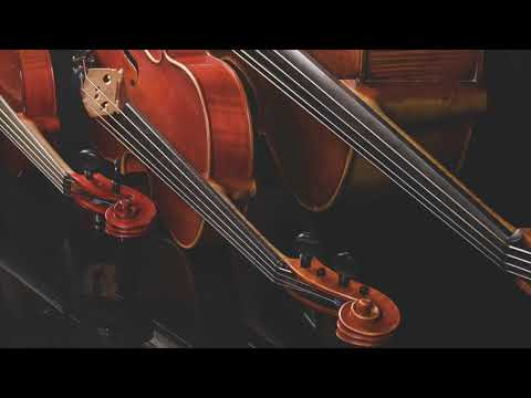 Yellow - Coldplay (Acoustic String Trio) - Electria