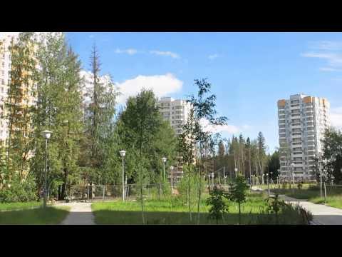Бесплатные объявления Зеленограда - Доска объявлений