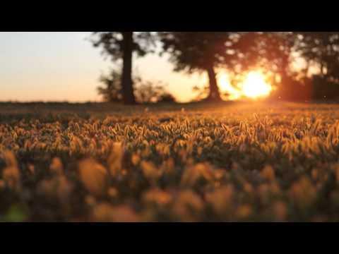 Markus Hakala - A Neverending Dream (Original Mix)