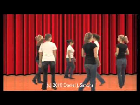 The Monkey Business Illusion - Video