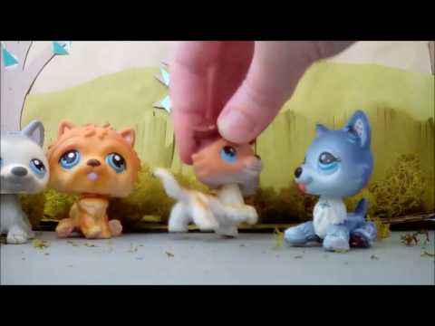 LPS Alpha and Omega scene The Moonlight Howl