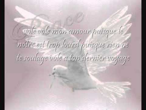 Vole Celine Dion with lyrics