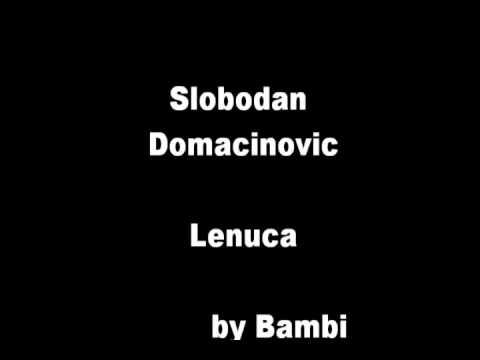 Slobodan Domacinovic - Lenuca