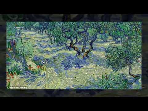Grasshopper found embedded in Vincent Van Gogh's Olive Trees painting
