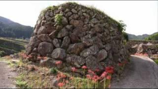 蕨野(わらびの)棚田の彼岸花