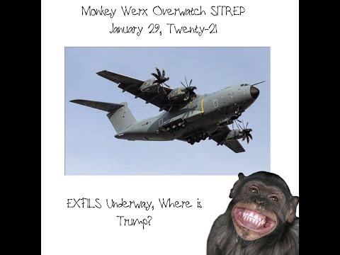 Monkey Werx Overwatch SITREP 1 29 21