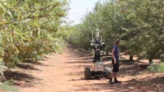 Autonomy in the Orchard