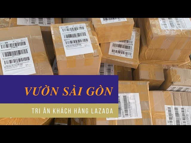 Vườn Sài Gòn tri ân khách hàng Lazada