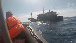 ФСБ России опубликовала кадры с места задержания браконьеров из КНДР в Японском море.