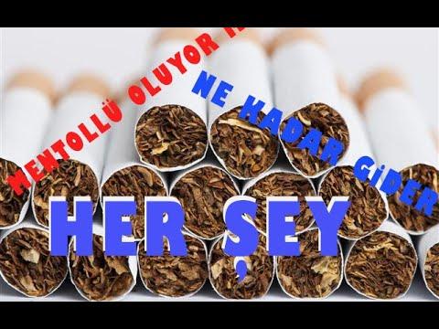 YENİ BAŞLAYANLAR İÇİN TÜTÜNLER HAKKINDA HER ŞEY - Tütün Çeşitleri, Mentollü İçilebilir Mi?...