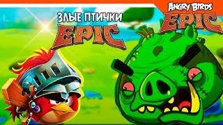 эНГРИ БЕРДС ЭПИК  Angry Birds Epic (Злые Птицы) Прохождение