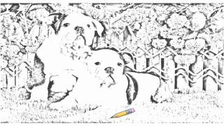Auto Draw 2: Bulldog Puppies
