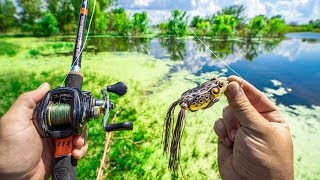 TOPWATER FROG Pond Fishing Challenge!!! (Blowups)