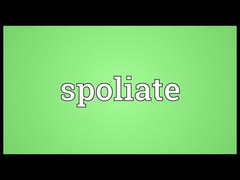 Header of spoliate