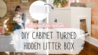 DIY Cabinet To Hide Cat Litter Box In A Small Space | Pet Tips