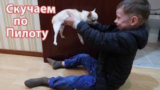 VLOG: Не хотят играть с Вовой / Пилотик дома не живет