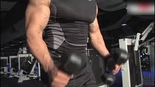 Dambıl ile kol kası geliştirme