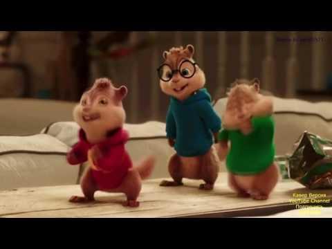 Alvin sincablar  aley Aley