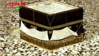 Maula Ki Qawwali | Tu Janta Hai Maula | Chand Afzal Qadri | Live Qawwali |  Tu J